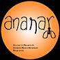 Ananar Navarra